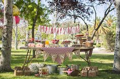 Spring party ideas for adults and kids - welk resorts - party themes Outside Birthday, Picnic Birthday, Outdoor Birthday, Adult Birthday Party, Birthday Party Themes, Park Party Decorations, Picnic Themed Parties, Vintage Picnic, Farm Party