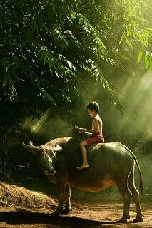 """The last pinner said: """"Small Village Kids-Bali"""" Village Photography, Children Photography, Bali, People Around The World, Around The Worlds, Lumiere Photo, Village Kids, Foto Picture, Vietnam Voyage"""