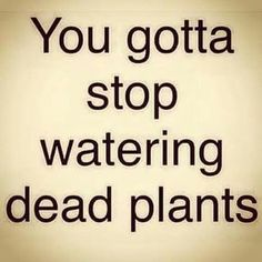 Stop Giving Attention To What You Can No Longer Revive // lol it's a post not about plants but I think it can be applied to plants too xD like maybe that's my problem - I'm watering dead plants 😂 Great Quotes, Quotes To Live By, Me Quotes, Motivational Quotes, Inspirational Quotes, Give And Take Quotes, Morals Quotes, Quirky Quotes, Quotes About Life