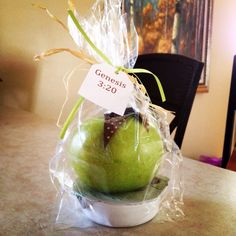 "Genesis bible verse gift for ""eve"" apple and caramel gift"