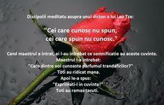 Maxime in imagini Spiritual Quotes, Alba, Thoughts, Audrey Hepburn, Qoutes, Spirit Quotes, Quotations, Quotes, Spirituality Quotes