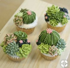 Bring in the family and create these awesome succulent cupcakes. We will ice our cupcakes with Buttercream and create fondant decorations to complete our edible Pretty Cakes, Cute Cakes, Beautiful Cakes, Amazing Cakes, Yummy Cakes, Cupcakes Design, Cake Designs, Cool Cupcakes, Decorated Cupcakes