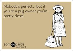 Nobody's perfect.... but if you're a pug owner you're pretty close! #pugs #ecards