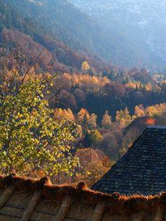 otoño en la #ValdAran #ValledeAran #catalunyaexperience #pirineos #pyreenes #valldaran #valledevalles