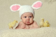 childre easter photos with live easter bunny | Easter portraits with LIVE bunny and BABY CHICKS