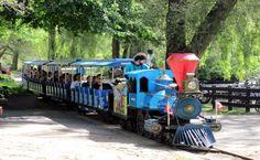 Who's in for a train ride ? Dream City, My Dream, Centre Island, Toronto Canada, Train Rides, Amusement Park, Traveling