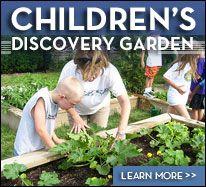 Children';s Discovery Garden- Wegerzyn