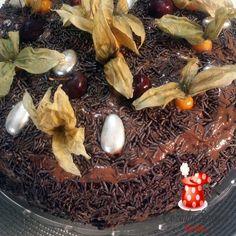 Bolo mousse de chocolate de liquidificador - Cozinha Simples da Deia