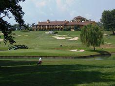 Golf club. Golf Clubs, Golf Courses