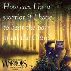 Yellowfang's Secret-how can I be a warrior if I have to bear the pain of the clan? Warrior Cats Quotes, Warrior Cats Series, Warrior Cats Books, Cat Quotes, Crazy Cat Lady, Crazy Cats, I Am A Warrior, Love Warriors, Three Cats