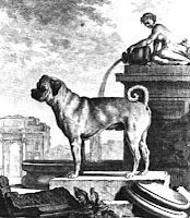 Marie Antoinette's Mops. Mops was the young archduchess' pug. In Caroline Weber's Queen of Fashion, the pup is described as tawney in color and as one of the accessories that could not be brought to France.  Mops had to ride back to Vienna without his owner.  Weber's mention of Mops implies that dogs were too much of a liability, for a lady who needs to keep a perfect image.    Mops was eventually sent to France and reunited with the new dauphine.