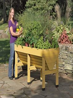 Planter boxes are ideal, where there is insufficient place for gardening.  The shape, design, color and the material of the planter boxes strike a rich visual appeal to any landscape. They are also cost efficient when it comes to the maintenance of flower