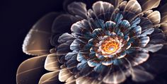 light Roses digital graphic design by Silvia Cordedda - Art pics & Design