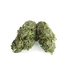 Buy Death Bubba Online in Canada at High Gardens created by crossing death star and bubba kush. Death Bubba weed strain give relief from unknotting tension and physical discomfort with ease. Weed Strains, Death Star, The Smoke, Earthy, Vancouver, Grass, Herbs, Couch, Sky