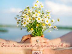 #GününSözü: Boşuna öldürmeyin papatyaları, seven sevdiğini belli eder. #aşk #sevgi #papatya #love #daisy