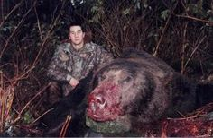 Biggest grizzly bear ever killed. Had remains of at least 3 different people found inside him! Large Animals, Animals Images, Big Wolf, Funny Emails, Predator Hunting, Bear Hunting, Weird Creatures, World Records, Bears