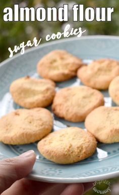Amazing Almond Flour Sugar Cookies   Low-Carb, Gluten-Free, Grain-Free Cookie Recipe!!
