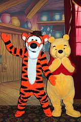 Meeting Winnie the Pooh and Tigger