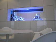 un aquarium intégré dans un mur blanc