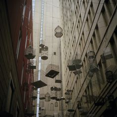 Birdcage Art Installation in Sydney by Tim Onnes, via 500px