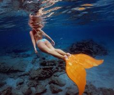 Feel like a mermaid while you traverse the underwater world. Wondering how? With the Merfin Mono-Fin.