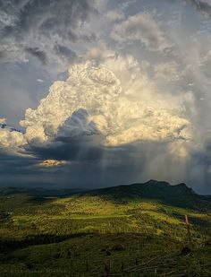 Thunderstorm in Larimer | Colorado (by Michael Menefee)