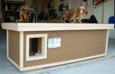 Chewy, Triumph, & Lexi - Nebraska:  several years of being tried and tested, this dog house has been proven to be the most comfortable and the safest home you can build for your beloved dogs.