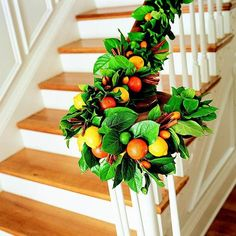 Not just for wreaths, these beautiful green leaves and aromatic citrus fruits create a tantalizing combination.
