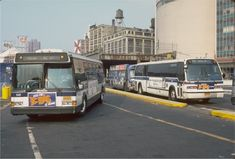 Click image to close this window Brooklyn New York, New York City, Jungle Drawing, Metropolitan Transportation Authority, Bus City, Luxury Bus, Buses And Trains, Bus Terminal, Rhythm And Blues