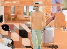 Alluring Apricot from our Menswear S/S 2016 Colour Forecast