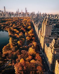 Central Park, New York, USA You are in the right place about new york city things to do in Here we offer you the most beautiful pictures about the New York City you are looking for. When you examine the Central Park, New York, USA part of … Autumn Aesthetic, City Aesthetic, Travel Aesthetic, Empire State, Photographie New York, Places To Travel, Places To Go, Travel Destinations, New York City Tours
