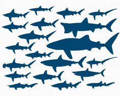 Free Vector File – 20 Shark Silhouettes | The Creative Portfolio of Nick Botner