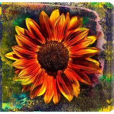 "Gallery Direct Sunflower by Sia Aryai Painting Print on Canvas Size: 40"" H x 40"" W"