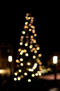 2000 Adventslichter #gewinnspiel #advent #weihnachten #deko #gewinn #kerze #christmas #xmas #blume2000 #blume2000de #lichter #tanne #tree #lights #glam