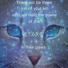 """Russian Blue Cats Facts """"There will be three, kin of your kin, who will the power of the stars in their paws. Warrior Cats Quotes, Warrior Cats Series, Warrior Cats Books, Warrior Cats Art, Cat Quotes, Warriors Erin Hunter, Love Warriors, Cat Room, Cat Accessories"""