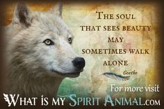 The best Wolf Quotes & Sayings in my giant Animal Quotes & Sayings…