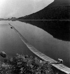 ΜΑΡΙΑ ΧΡΟΥΣΑΚΗ | 1899 ΣΜΥΡΝΗ - 1972 ΑΘΗΝΑ | ανεμουριον Masters, River, Photography, Outdoor, Master's Degree, Outdoors, Photograph, Fotografie, Photoshoot