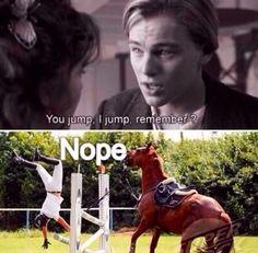 Ahhh you gotta love them horses