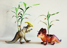 Dinosaur Planters | 10 DIY Ways To Bring A Little Green Into Your Space
