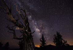 Milky-Way-Tom-Lowe-Timescapes-1