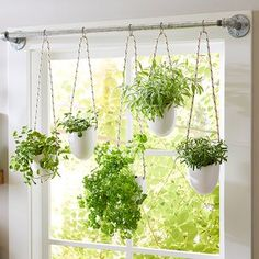 These 13 Herbs Will Thrive in Container Gardens Window Herb Planter Rustic Planters, Indoor Planters, Diy Planters, Indoor Window Planter, Indoor Herbs, Tall Planters, Succulent Planters, Concrete Planters, Plants Indoor