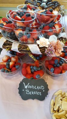 Woodland berries on skewers instead. Shower Bebe, Baby Shower Fun, Baby Shower Gender Reveal, Baby Shower Themes, Baby Shower Decorations, Shower Ideas, Woodlands Baby Shower Theme, Lumberjack Birthday Party, 1st Boy Birthday