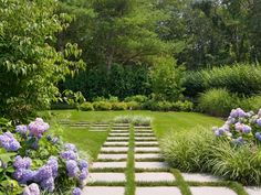 In the distance, the Kousa Dogwood acts as a focal point to pull the eye through the front pathway along with the low Liriope in the foreground. Designer tip: Soft textures and colors, like in these hydrangeas, evoke a feeling of being able to wander and get lost in relaxation.