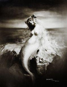 vintage mermaid                                                                                                                                                                                 More