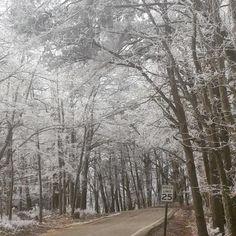 Cheaha State Park Alabama Feb 2015