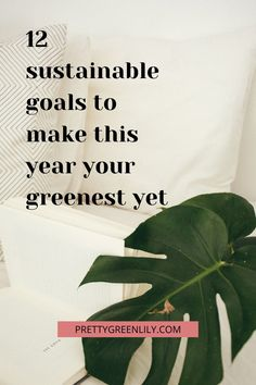 What's your biggest sustainable goal? Going low waste, buying less and buying smarter, starting that composting bin, getting more plants or going flexitarian. There are hundreds of ways to make your life greener with way less effort than you might think. These are 12 eco-friendly resolutions or goals to keep all year long and every year after this one too! #sustainableliving | via @prettygreenlily I Love New Year, Declutter Your Life, Circular Economy, Minimalist Lifestyle, Composting, Pretty Green, Support Small Business, Slow Living, Inspirational Books