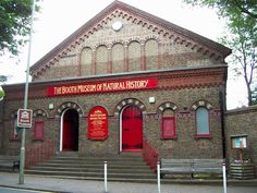 Booth, museum of natural history, Brighton - frequently visited during my schooldays