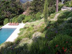 Taibi Addi Golf Courses, Gardens, Landscaping