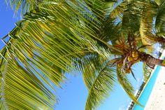 Shoal Bay West, Anguilla #Caribbean
