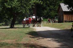 Humbug Days at Malakoff Diggins Historic State Park..Ca.